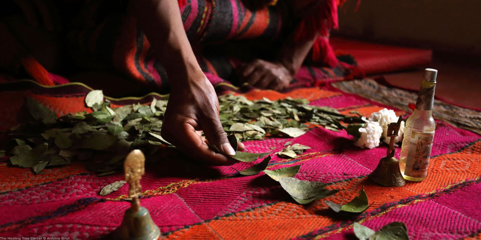 Coca Leaf Reading Ceremony