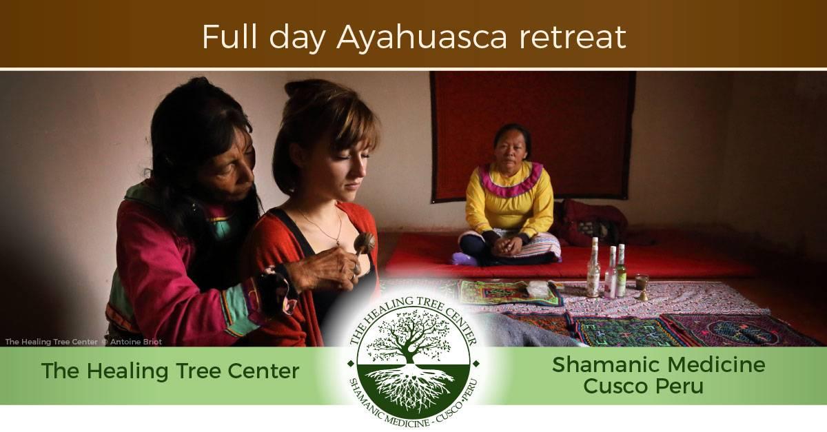 Full day Ayahuasca retreat